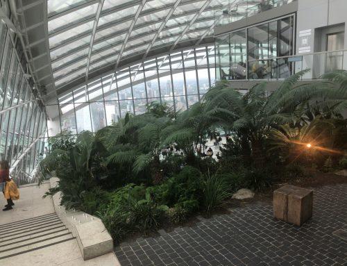 fAABI Offsite Trip to Sky Garden